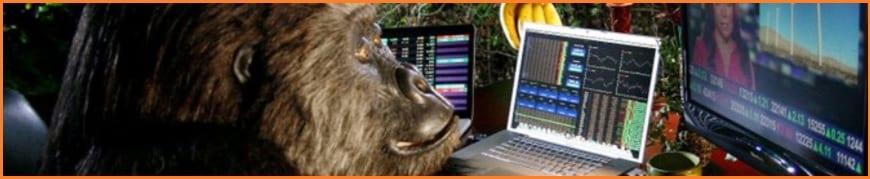 Gorilla Trades Review - The GorillaTrades Gorilla