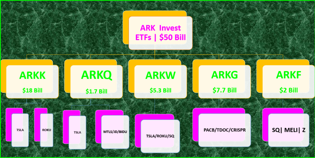 Which ARK ETF Is Best For You : ARK Invest Tree with Top Holdings