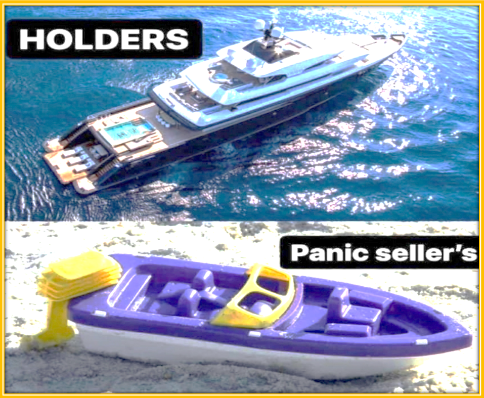 How To Profit From Meme Stocks Trading Frenzy - Illustration of Buy and Hold Strategy vs Panic Selling